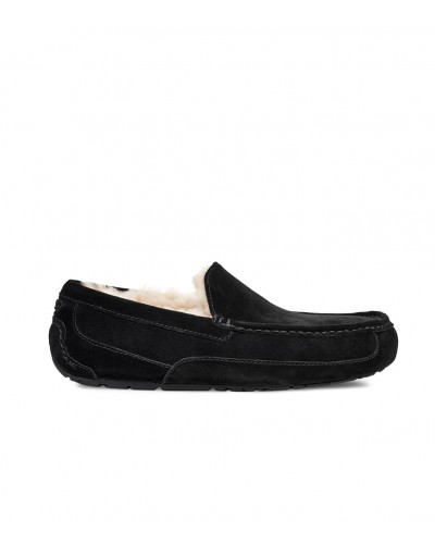 Ascot in Black by UGG