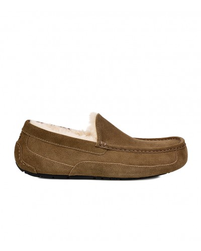 Ascot in Dry Leaf by UGG